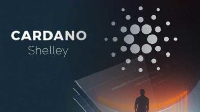 Cardano: pronti per entrare nell'era di Shelley?